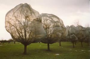 Christo and Jeanne Claude, Wrapped Trees, Fondation Beyeler and Berower Park, Riehen, Switzerland, 1997-98